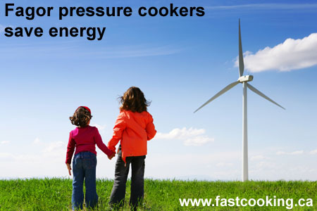 Pressure Cookers Save Energy